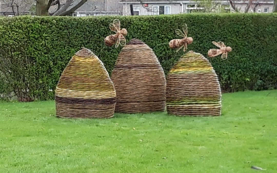 Giant willow skeps